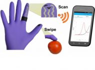 Novel Flexible Glove-Based Biosensor for Detecting Organophosphates